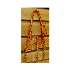 Spaans halster met lijn