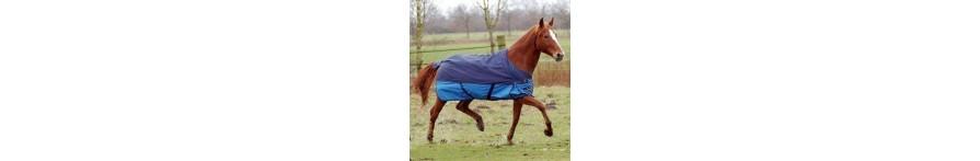 Horserugs